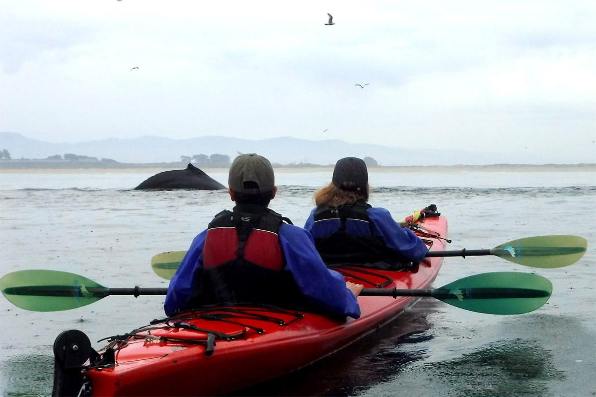 kayaking winter rain